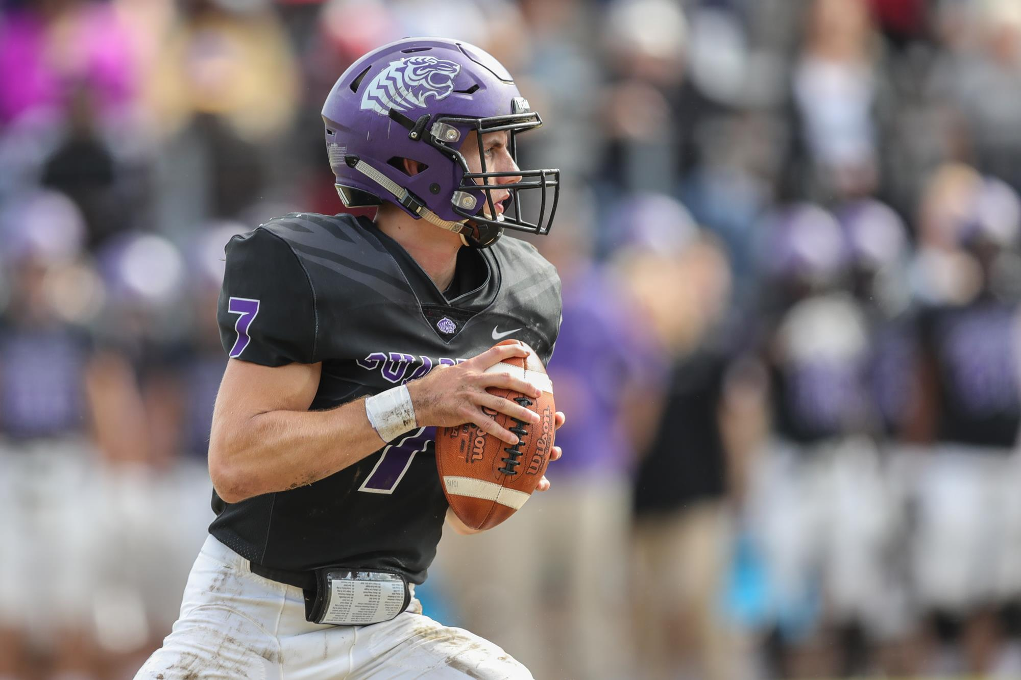 Tigers Looking To Continue Historic Season Against Ferris State